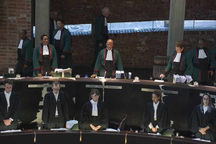 Social Grants in the Constitutional Court