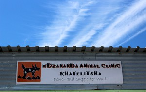 Mdzananda Animal Clinic