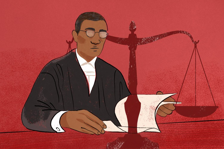 The Pietermaritzburg High Court has declared the Minister of Rural Development and Land Reform to have breached her duty to respect, protect and promote the constitutional right to property of people living on Ingonyama Trust land. Illustration: Lisa Nelson