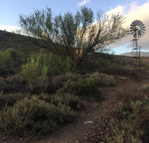 Photo of Karoo landscape