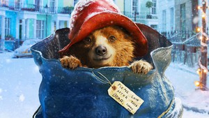 Image of Paddington Bear