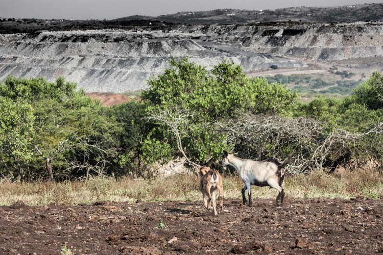 Neighbouring subsistence farmers complain that coal dust pollutes their crops, turns their white chickens grey and the intestines of their goats black. Photo Rob Symons
