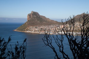 Photo of Hout Bay from Chapman's Peak Drive