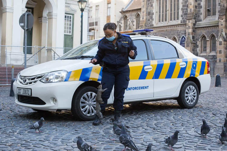 A law enforcement officer stationed at Greenmarket Square is befriended by a squirrel during day 1 of the Covid-19 lockdown in Cape Town, South Africa. - Ashraf Hendricks