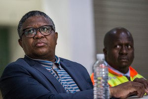Fikile Mbalula after the Western Cape's train system was suspended