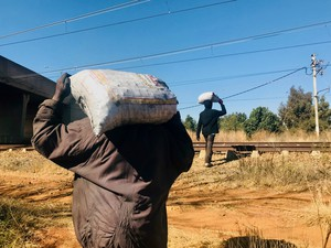 Photo of two men carrying sacks on their shoulders