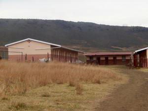 Photo of a school