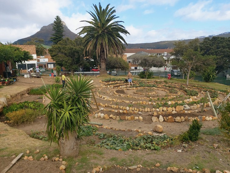 The Streetscapes garden in Vredehoek offers employment and social interventions for homeless people.