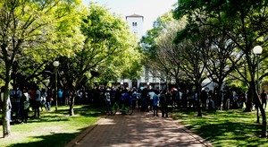 Photo of students gathering under trees