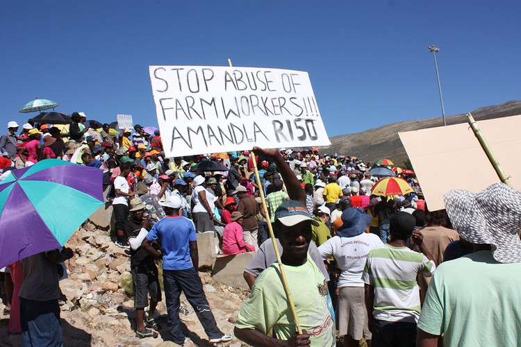 Photo of striking farm workers