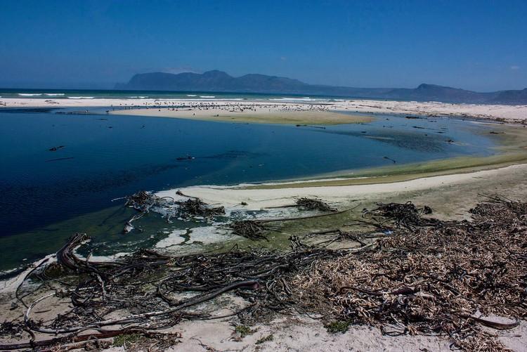 Photo of a coast
