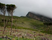 Rain clouds descend Table Mountain. Photo by Amelia Earnest.