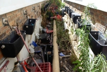 The school's broken toilets. Photo by Masixole Feni.