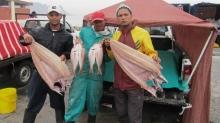 Waquil Samuels, Benvon Jaggers and Anwar Samuels - traders at the Strand Pavilion beach. Photo by Bernard Chiguvare.