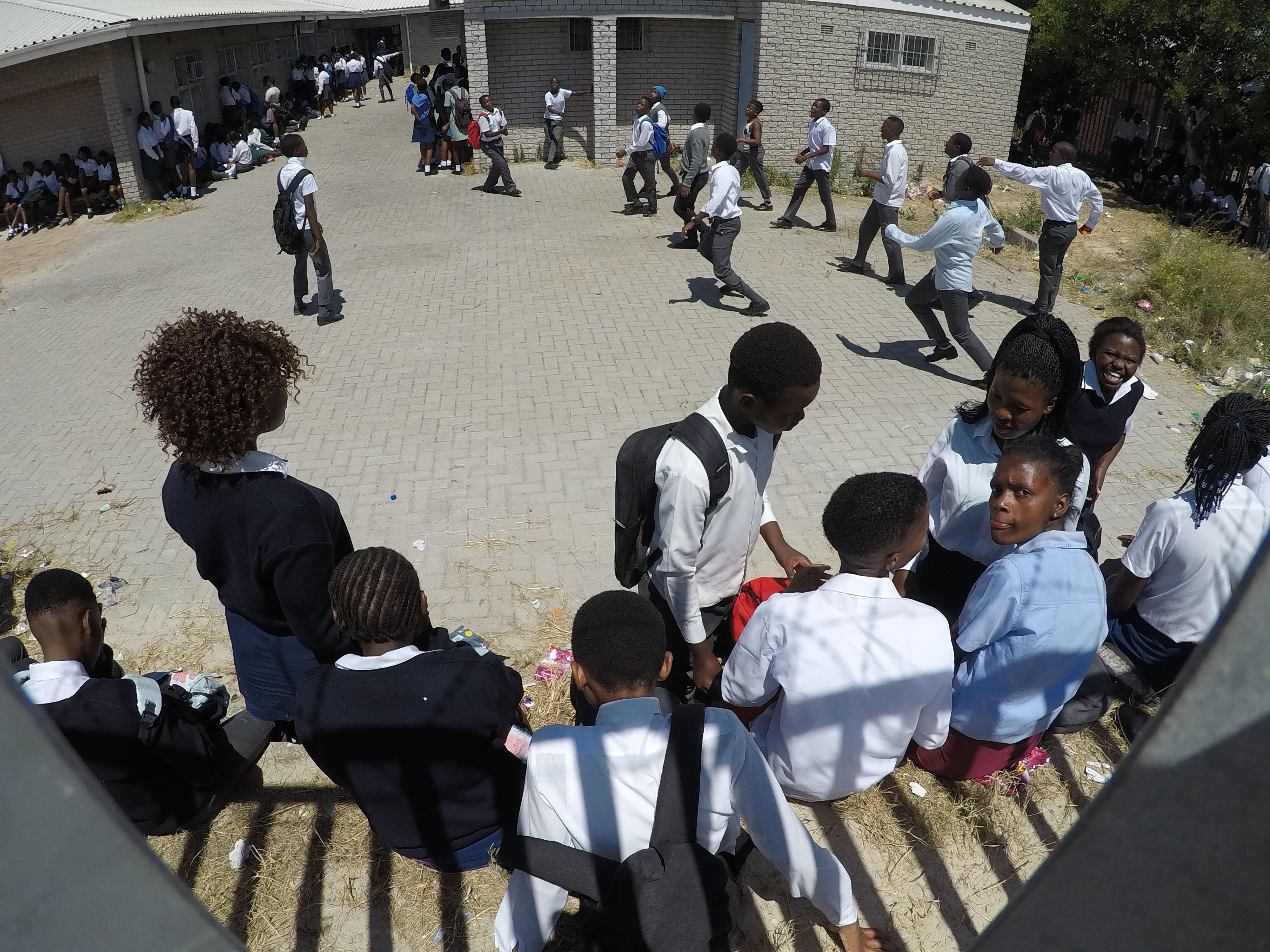 professionnel de premier plan couleurs et frappant site web pour réduction Western Cape Education Department says test results have ...