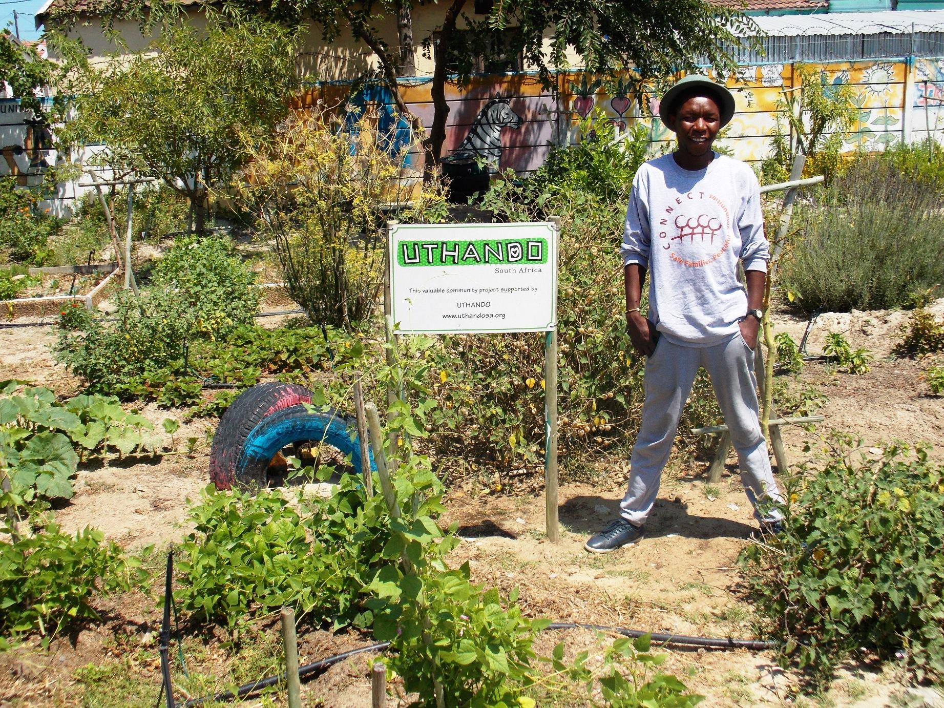 School vegetable gardens - Khayelitsha Schools Benefit From Having Own Food Gardens